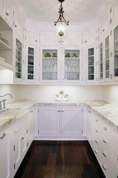 A walk-in pantry designed for use as a working pantry. Sinks, dish storage, and food storage integrated in appearance into the kitchen space.