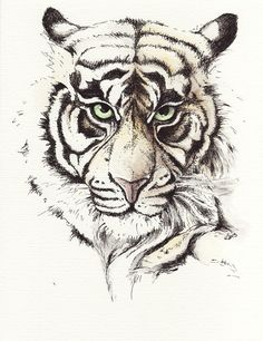 Wunderschöne Zeichnung!