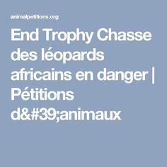 End Trophy Chasse des léopards africains en danger |  Pétitions d'animaux