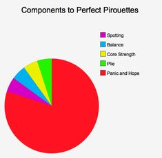 Components to Perfect Pirouettes: A Pie Chart