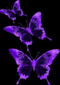 Purple Butterfly Wallpaper, Purple Wallpaper Iphone, Neon Wallpaper, Wallpaper Backgrounds, Dark Purple Aesthetic, Lavender Aesthetic, Aesthetic Colors, Aesthetic Pictures, Violet Aesthetic