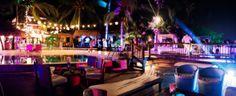 En este escenario, se garantiza que cada celebración será programada y desarrollada según las expectativas de cada cliente y ejecutada de manera que se haga realidad lo que esperan de su #evento. Party, Fun, Cartagena, Parties, Hilarious