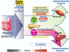 muestra del menú del plan de dieta para diabetes tipo 2