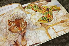 Little Red Riding Hood by Jerry Pinkney.  Little, Brown and Company, 2007. // Silver Shoes & Rabbit Holes