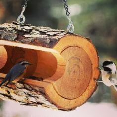 #morning #bomdia #birds #wooden #home #pássaros #awesome #detail #design #decor #decorating #interiordesign #home #decorhome #interiordecor #inspiration #instapic #instalove #instaphoto #instalove #instadesign #instadecor #instadaily #instacool #designlovers #picoftheday #Padgram