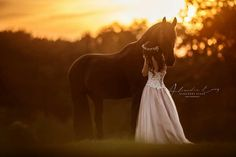 Lady hugging horse in the setting sun, golden glow like a dream. butterfly spirit