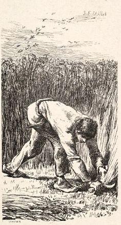 Jean-Francois Millet - The Reaper  1853