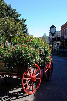 Historic District - Savannah, GA