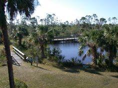 Image of C21. Charlotte Harbor Environmental Center: Alligator Creek Preserve