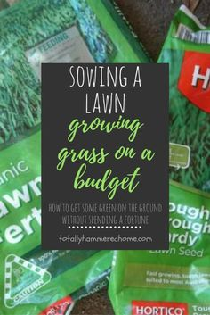 Sowing A Lawn Growing Grass on a Budget Growing Grass, Do It Yourself Projects, Lawn, Budgeting, Landscaping, How To Get, Gardening, Green, Lawn And Garden