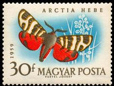 Bug Art, Fauna, Stamp Collecting, Postage Stamps, Butterfly, Public Domain, Countries, Objects, Vintage