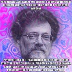 17 Best DMT images in 2013 | Spirituality, Mindfulness, Psychedelic