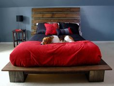 15 Unique DIY Pallet Bed Frame Ideas - napier news Build A Platform Bed, Wooden Platform Bed, Platform Beds, Platform Bed Designs, Diy Pallet Bed, Diy Bett, Palette Diy, Murphy Bed Plans, Headboards For Beds