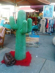un cactus...al Gran Balon.....