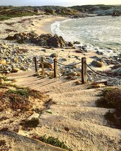 The unofficial start of summer has us dreaming of all the beaches we want to explore. This one's in Pacific Grove. Happy Memorial Day! 🇺🇸 . #SageCanyonBotanicals #DiscoverSageCanyon #montereylocals #pacificgrovelocals - posted by Sage Canyon https://www.instagram.com/sagecanyonbotanicals - See more of Pacific Grove, CA at http://pacificgrovelocals.com
