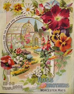 Ross Brothers 1902 year book : everything for the farm and garden Flower Catalogs, Garden Catalogs, Seed Catalogs, Seed Illustration, Botanical Illustration, Botanical Prints, Illustrations, Vintage Labels, Vintage Ephemera
