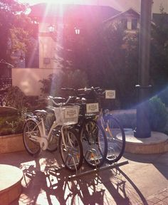 Our retro bicycles ready to accompany you in the nearby Cișmigiu Gardens! Retro Bicycle, Bucharest, Bicycles, Gardens, Journey, Contemporary, Architecture, City, Inspiration