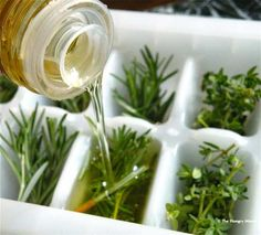 They're the perfect way to preserve herbs, and can go from freezer right to frying pan. Sound like one of those handy housewife helpers from the 1950s to you?