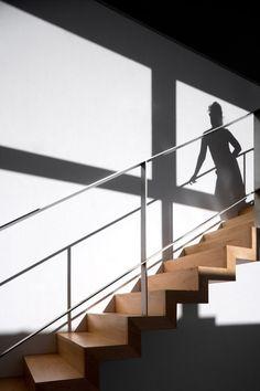 O House / Belém Lima Architects (5)