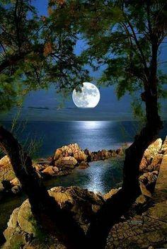 Moonlight thru the trees Beautiful Nature Pictures, Beautiful Nature Wallpaper, Amazing Nature, Nature Photos, Pretty Pictures, Beautiful Landscapes, Beautiful World, Beautiful Beautiful, Beautiful Sunset