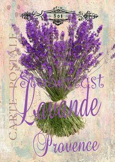 Bügelbild+Lavande+Provence+No+1+Carte+Postale+1,60+von+STÖBERLUST+~+KREATIV+auf+DaWanda.com