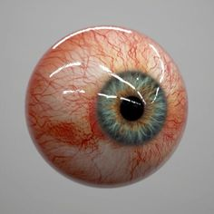 Arte Horror, Horror Art, Eyeball Anatomy, Eyeball Drawing, Human Anatomy Art, Eyes Artwork, Medical Anatomy, Human Eye, Eye Photography