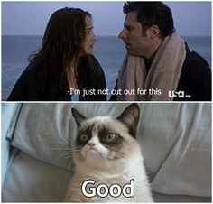 Psych and grumpy cat! Best Tv Shows, Best Shows Ever, Favorite Tv Shows, Favorite Things, Psych Quotes, Psych Memes, Memes Humor, Cat Memes, Movie Quotes