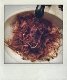 07.07.13 Bill's Hair :D