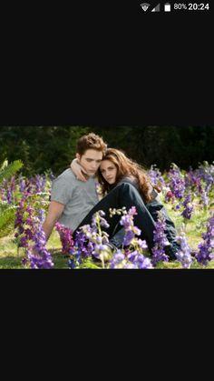 👉 Twilight 👈