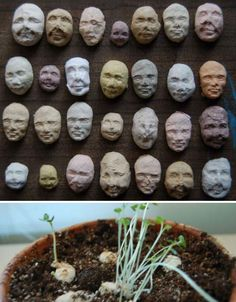 Are these paper faces full of seeds cool, or creepy? That depends on your perspective. These recycled paper pulp seed packs molded to look like human faces are kind of cute, but it gets a little weird when plants start sprouting up out of their eyes and mouths.