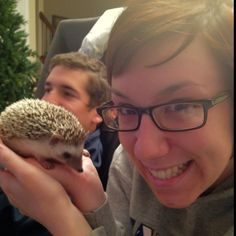 I want a hedgehog. Now please.