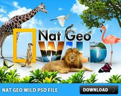Nat Geo Wild PSD Filejhg