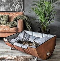 Memes, , and pet: upcycled pet bed from an oil barrel upcycled table dog bed, upcycled pet bed from an oil barrel meme on meme. Cat Room, Pet Furniture, Industrial Dog Beds, Cheap Furniture, Industrial Style, Furniture Ideas, Furniture Market, Furniture Companies, Home Decor Ideas