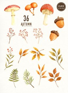 Autumn Leaf Watercolor Clipart Wreath Mushroom Commercial Use DIY Hand Painted Watercolour Thanksgiving Fall Leaves Fall Foliage wedding fall Illustration Blume, Autumn Illustration, Watercolor Illustration, Watercolor Clipart, Watercolor Leaves, Watercolor Paintings, Watercolour, Fall Paintings, Wreath Watercolor