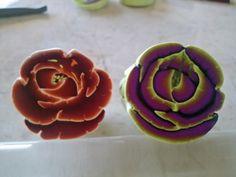 Week 17 rose canes - Jenny Rosania