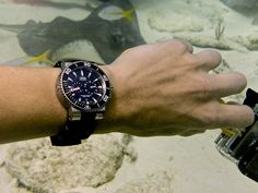 Learning To Dive With Oris Watches: A Winner's Perspective Feature Articles