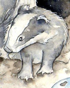 Amy Holliday Illustration