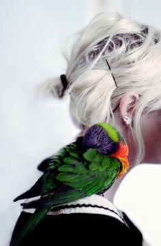 parrot on my shoulder!