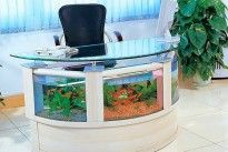 10 Unusual And Unique Fish Tanks Aquariums
