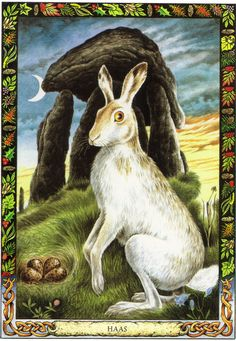 Hare | The Druid Animal Oracle by Stephanie and Phillip Carr | Meaning: rebirth, intuition and balance | Reversed: it suggests that there may be imbalances in one's life.