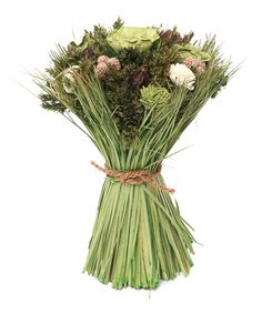 Look at this Sage & Floral 12'' Bundle on #zulily today!