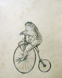 Mr. Toad Rides a Penny Farthing ordinary bike drawing