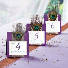 Peacock Wedding Table Numbers - OrientalTrading.com For guest ??