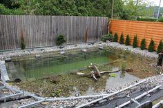 Esta parece ser uma piscina normal, mas quando ela está cheia… que loucura!