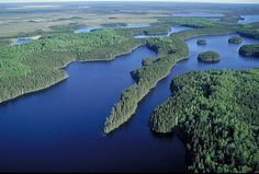 Canada, Northern Ontario, boreal forest, photo Canadian Parks and Wilderness Society Wildlands League