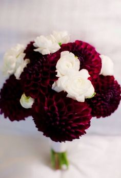 Bouquet Ideas Bouquet idea, deep red dahlias with white flowers. Would love if we could do lighter pink dahlias.Bouquet idea, deep red dahlias with white flowers. Would love if we could do lighter pink dahlias. Cranberry Wedding, Burgundy Wedding, Red Wedding, Wedding Blog, Fall Wedding, Wedding Colors, Wedding Flowers, Fall Bouquets, Bride Bouquets