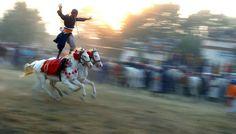 "Képtalálat a következőre: ""nihang singh"" Akhal Teke, Diwali Festival, Traditional Games, Horse Riding, Martial Arts, Religion, Horses, India, History"