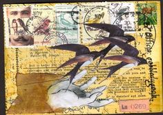 re pinning because I love a envelope with birds