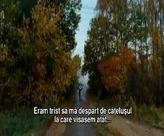 CATELUSUL Film Ortodox film rusesc online