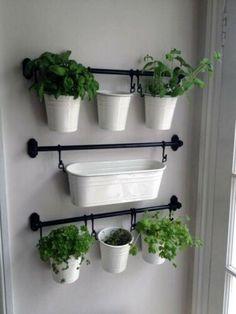 Herb Garden In Kitchen, Diy Herb Garden, Herb Garden Design, Kitchen Herbs, New Kitchen, Kitchen Decor, Home And Garden, Garden Ideas, Herb Gardening